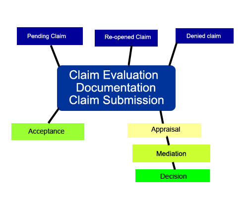 ClaimsProUSA insurance claim process